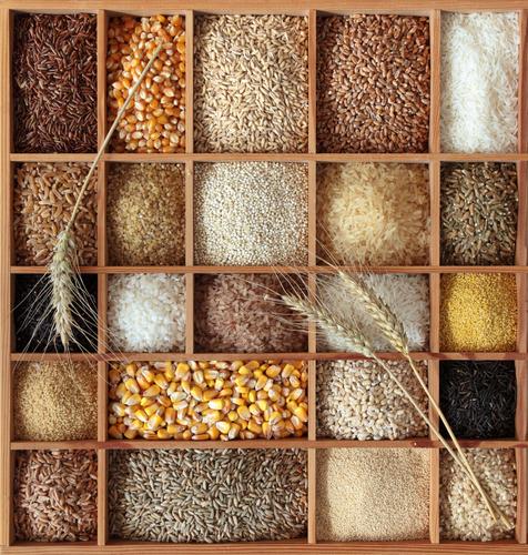 Ingredienti della Birra: altri Cereali